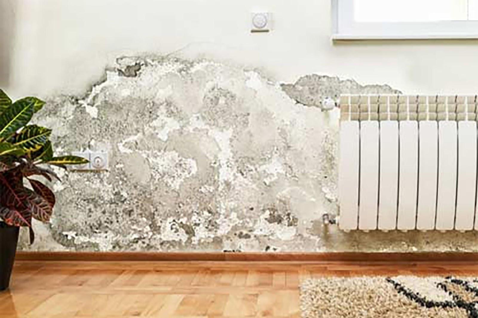 Nước đọng lâu ngày gây mốc tấm ốp tường